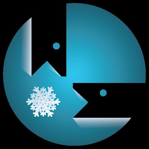 Winter Classic - Veteran